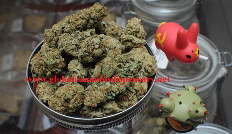MAIL ORDER MARIJUANA ONLINE WITH WORLDWIDE SHIPPING